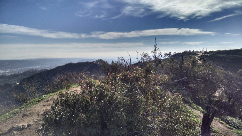 Griffith Park Observatory Trail.